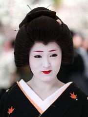 Baikasai 2010 - Geiko Ichimame  (Iniwa) Tags: japan kyoto maiko geiko geisha   baikasai    kamishichiken  ichimame