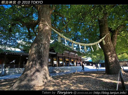 明治神宮 @ 2010 TOKYO
