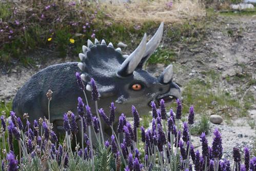 springtime in Dinoland