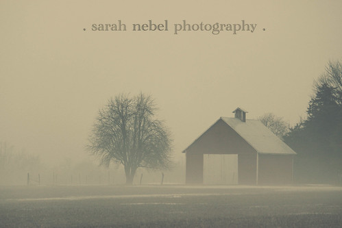 . foggy afternoon .