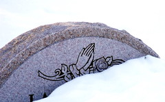 praying hands (dmixo6) Tags: winter canada nature weather spring melt muskoka thaw sapsucker bipolar dugg dmixo6
