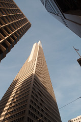 Transamerica Pyramid Photo