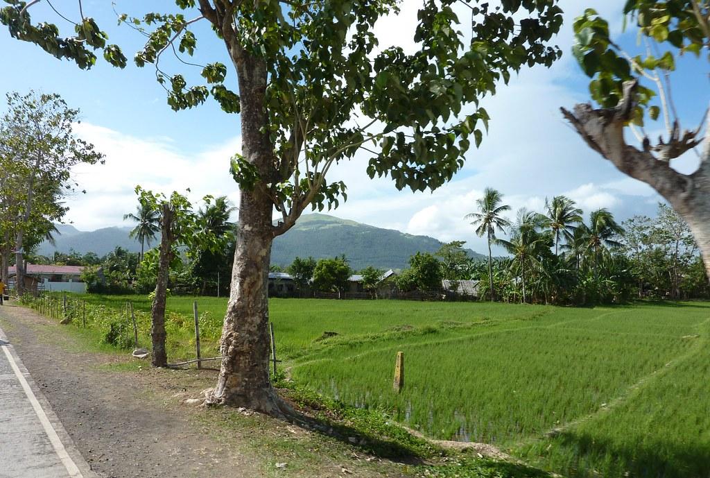 Leyte-Ormoc (14)