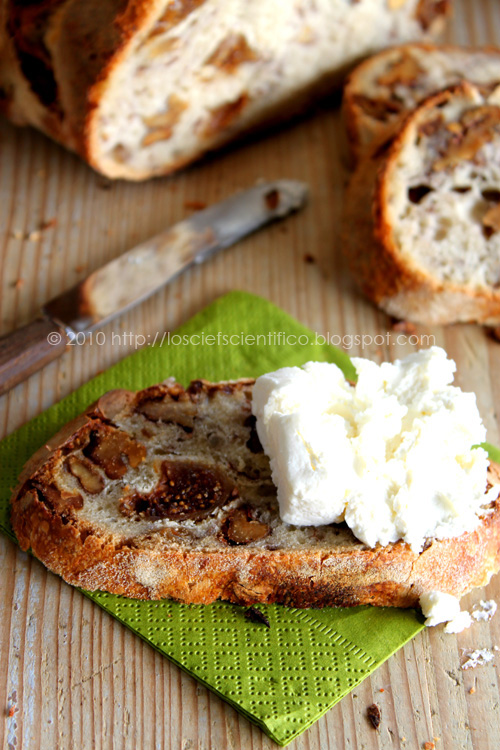 Fig & Walnut Bread