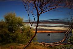 Cuando aparecen las luces... (JULIETA ZUBIRI FOTOGRAFA) Tags: las luz sol azul del canon uruguay atardecer luces poste playa verano punta este naranja vacaciones julieta 2010 cuando ramas fotografias caida zubiri arbusto xti aparecen