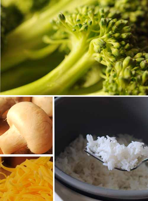Broccoli-Rice ingredient storyboard