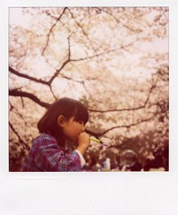 innocence* (mika-rin) Tags: pink girl polaroid sx70 peace weekend happiness bubble innocence cherryblossom sakura lotta
