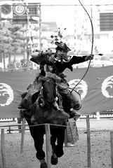 Yabusame (Hardy ~higotai~) Tags: horse nikon 日本 archery hardy 馬 yabusame 流鏑馬 弓 higotai
