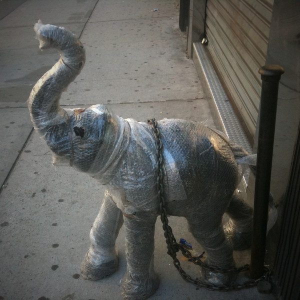 bubble wraped elephanted chained to a door #walkingtoworktoday