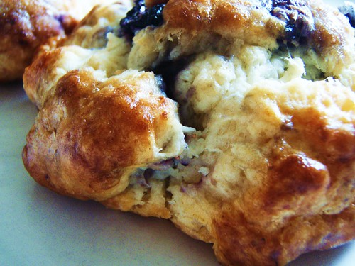 51 - english cream blueberry scones