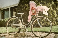 Riding in Style (kderty74) Tags: pink texture bike spring lantern antinque