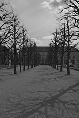 Shadows in Karlsruhe (johanfoster) Tags: germany deutschland europe karlsruhe federalrepublicofgermany bundeslandbadenwrttemberg stadtgetty2010