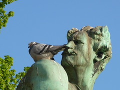 What are you doing there? (seikinsou) Tags: brussels sculpture square belgium belgique pigeon bruxelles shoulder ambiorix