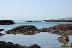 tidepool9 (timwinter79) Tags: range tidepools tidepool tidal sanpedrotidepools