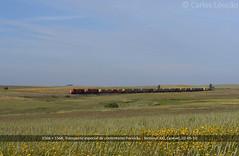 2010.05.02. CP 1566 + CP 1568 (Carlos Louo) Tags: train cp railways sines msc comboio 1550 alco mlw poceiro