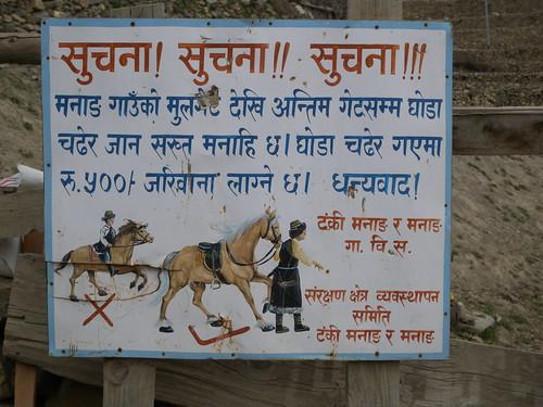 No Horse Riding