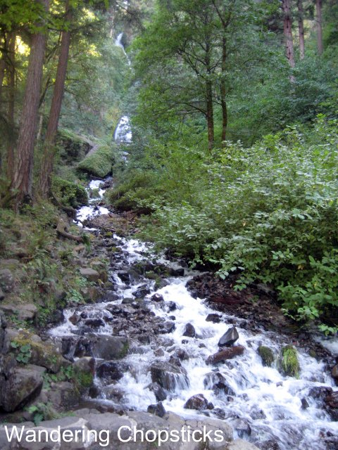 Day 4.5 Wahkeena Falls - Columbia River Gorge - Oregon 2