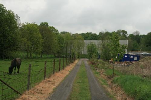 Landschaft mit Pferd und Baustelle, Ausfahrt GE-Süd
