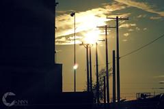 Perched_Sun