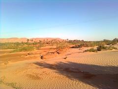 واد زوزفانة ، بني ونيف beni ounif(algerie)