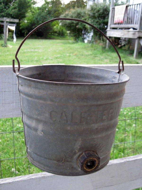 Calf-teria bucket