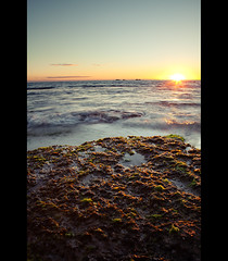 Burns Beach Algae [137] (Levi Buzolic) Tags: ocean longexposure light sunset sky orange sun colour green beach water clouds canon landscape eos moss movement sand rocks surf waves tide horizon spray perth levi wa 365 algae splash westernaustralia 2470mm 2470 burnsbeach project365 canon2470mmf28lusm 5dmkii loudphotosdaily dailyloudphotos