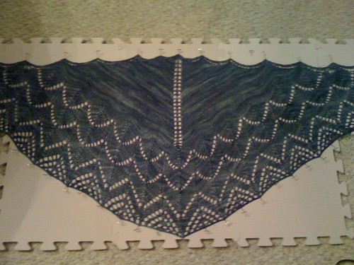 Traveling woman shawl