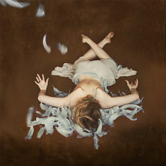 first flight (brookeshaden) Tags: blue bird animal dead natural flight feathers first snap human partialnude brookeshaden