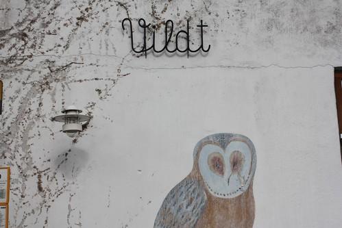 Owl..