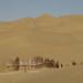 Taklamakan desert sands