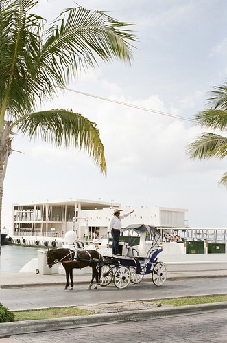 CruiseMay2010_56Cozumel.jpg