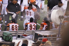 D-Line (Michael Sachs) Tags: ohio brown robert st paul louis michael football jay stadium cincinnati sony nfl johnson johnathan rams hayes bengals peko a300 geathers domata fanene