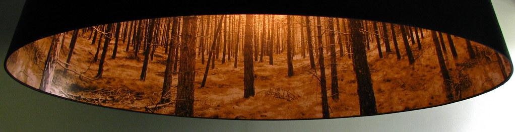 Lamp shade woods