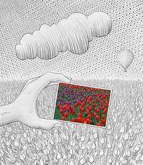 Pencil Vs Camera - 26 (Ben Heine) Tags: red sky cloud flower art texture nature fleur colors field composite bulb composition print landscape rouge photography lights freedom sketch cloudy earth air horizon group creative champs grow picture atmosphere twist dessin explore oxygen ciel libert tulip passion bloom terre series reverse conceptual dots breathe inverted nuage copyrights simple emptiness disegno imagen stylized ecosystem vide croquis vrijheid tuliporchid benheine flickrunited infotheartisterycom pencilvscamera photoinadrawing
