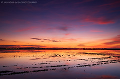 Glorious sunset at the rice fields II (Salva del Saz) Tags: park parque sunset water canon atardecer eos twilight agua raw rice angle natural dusk wide lee fields gran crepusculo filters angular ultra marshland campos arroz flooded albufera extremo inundado efs1022mm marjal singleraw singhray 40d salvadordelsaz salvadelsaz reversegnd