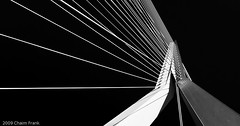 The Swan (jetrated) Tags: bridge bw panorama white abstract black netherlands architecture swan rotterdam erasmus fineart technical brug maas zwaan allrightsreservedcopyrightchaimfrank