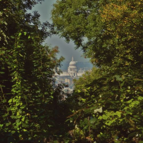 Nunhead Cemetery ~ View of St. Paul