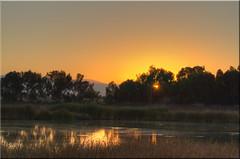Late for Work... (Jill Clardy) Tags: sunrise reeds dawn golden 100views marsh palo alto preserve hdr baylands photomatix 7353 7355 7354