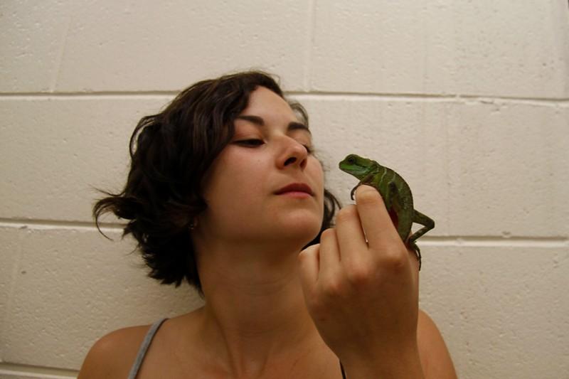 Lizard me