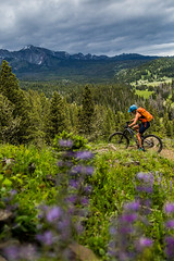 Bangtails (The Noisy Plume) Tags: montana bangtailrange mountains adventure explore bicycle mountainbiking wildflowers summer travel