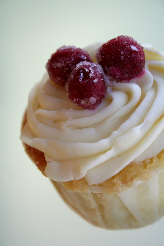 Meyer Lemon Cranberry Cupcake