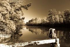 DSC_8735 [1600x1200] Sepia (RobinDeRouen) Tags: sepia river homer angelina challengefactorywinner thechallengefactory anythinggoeschallengewinner agcgmegachallengewinner