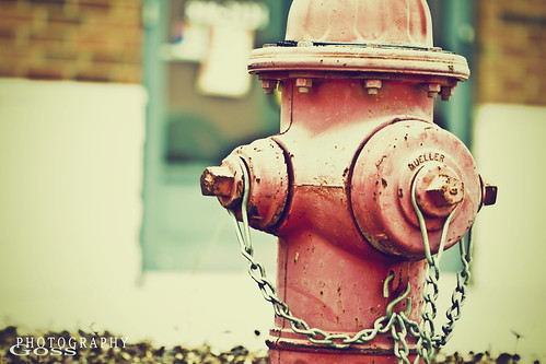 1/100 Addicted to Firehydrants