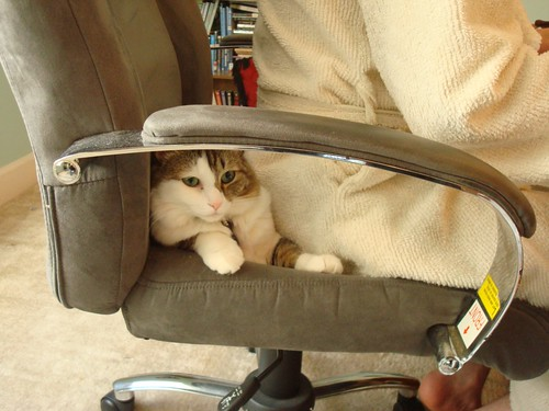 Seat Stealer