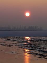 Ice floes @ sunset (Ryffa) Tags: winter sunset flevoland almere ijs oostvaardersdijk blockvankuffeler