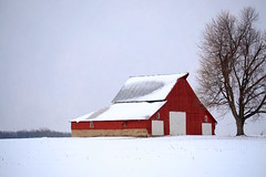 Red Barn and Tree in Snow (Jeremy Stockwell) Tags: winter red snow cold tree texture field barn nikon farm redbarn fromwindow d40 jeremystockwellpix nikond40