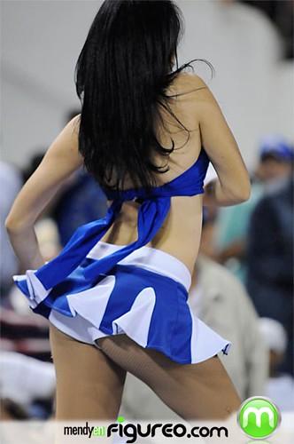 Sexy bailarina de los Tigres del Licey4