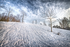 Winter Hill (Bas Lammers) Tags: blue trees winter cloud white snow holland tree netherlands dutch fauna clouds forest canon season landscape bomen blauw explorer sneeuw wide nederland dramatic natuur wolken wideangle boom bos wit 1022mm hdr floriade hoofddorp landschap lightroom seizoen haarlemmermeer photomatix 50d haarlemmermeersebos canon50d platinumheartaward hdraward vorkenmes haarlemmermeerbos hdrcreativeshots platinumbestshot platinumpeaceaward hdrdreams lightroom3beta