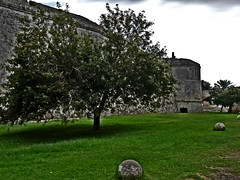 The Castle of Rhodes (ptg1975) Tags: old sea tree castle grass island traditional aegean hellas medieval greece rodos rhodes  dodekanese