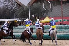 LCfoto_4975 (lcfoto) Tags: horse ball cheval elite passion pro luc avignon championnat horseball chevalpassion chamontin